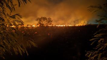 Sofocan incendio de gran dimensión sobre Carretera a San Mateo