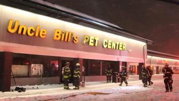 Incendio en tienda de mascotas de EU deja 100 animales muertos
